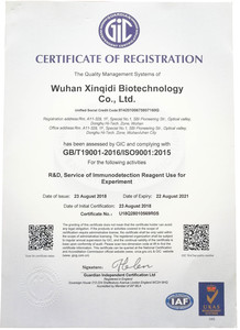 Xinqidi ISO9001:2015 Certificate of Registaion