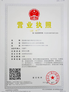 Chinese Government License